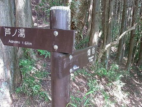 やじうま取材 006.jpg